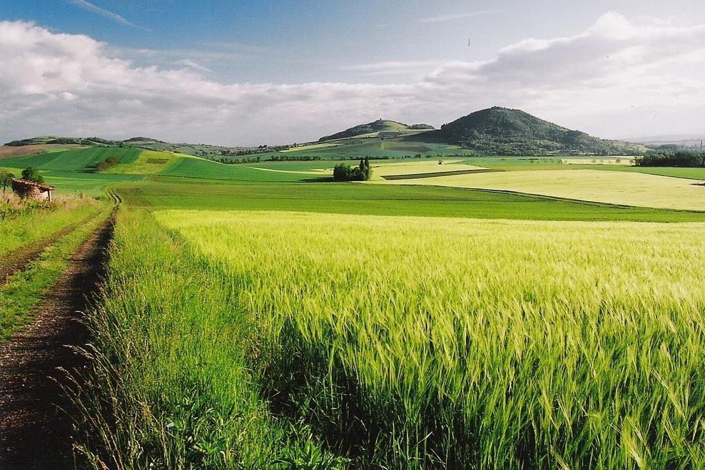 joel damase-Toscane d'Auvergne